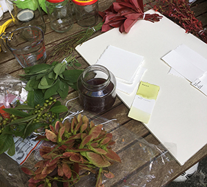 Botanical Inkmaking