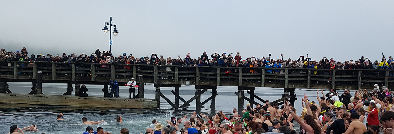 The annual penguin plunge