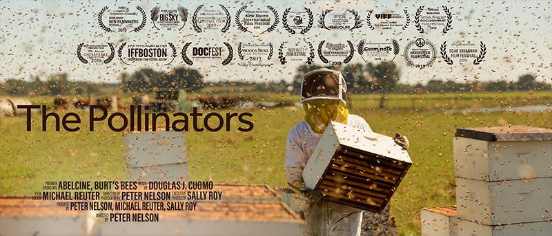 Pollinators film poster